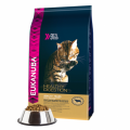 Eukanuba Adult Cat Healthy Digestion