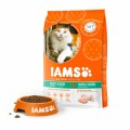 Iams Cat Adult Hairball