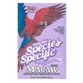 Pretty Species - Macaw